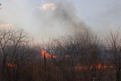 Lei municipal proíbe queimadas em Picos e aplica penalidades para quem descumpre