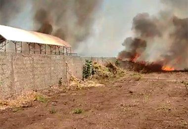 Incêndio atinge campus da Uespi em Picos e destrói laboratório de Agronomia