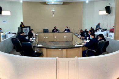 Câmara de Picos vota PL para criação do Conselho de Proteção e Defesa dos Animais